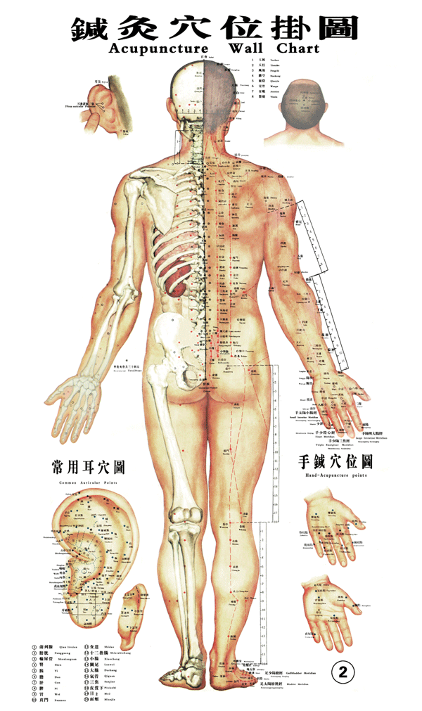 acupuncture for back pain, london